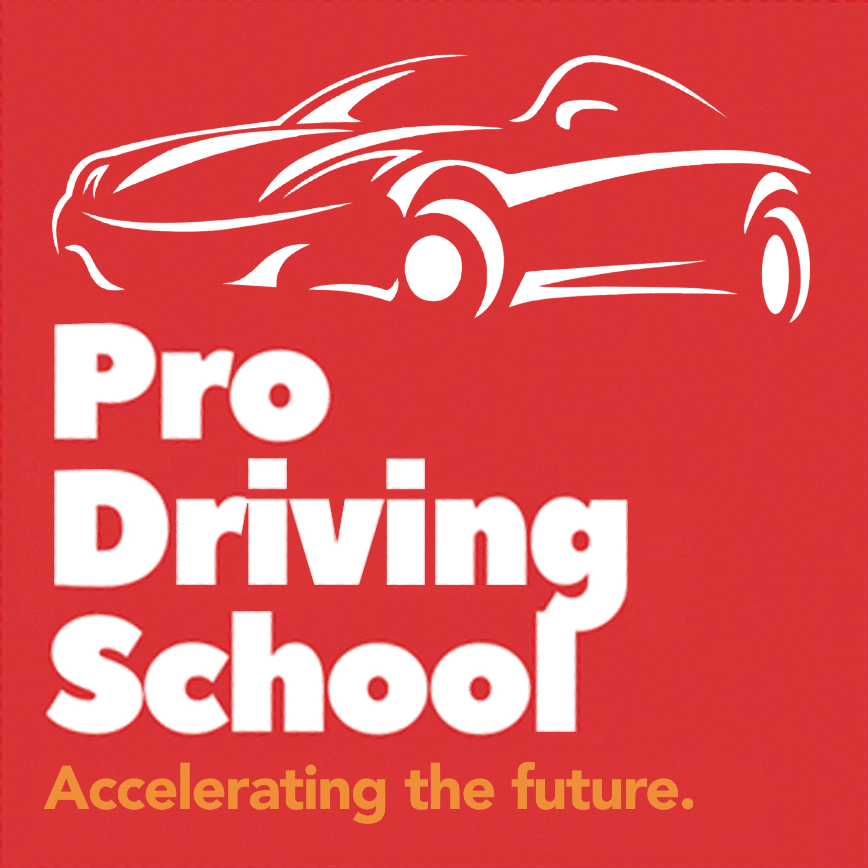 Pro Driving School